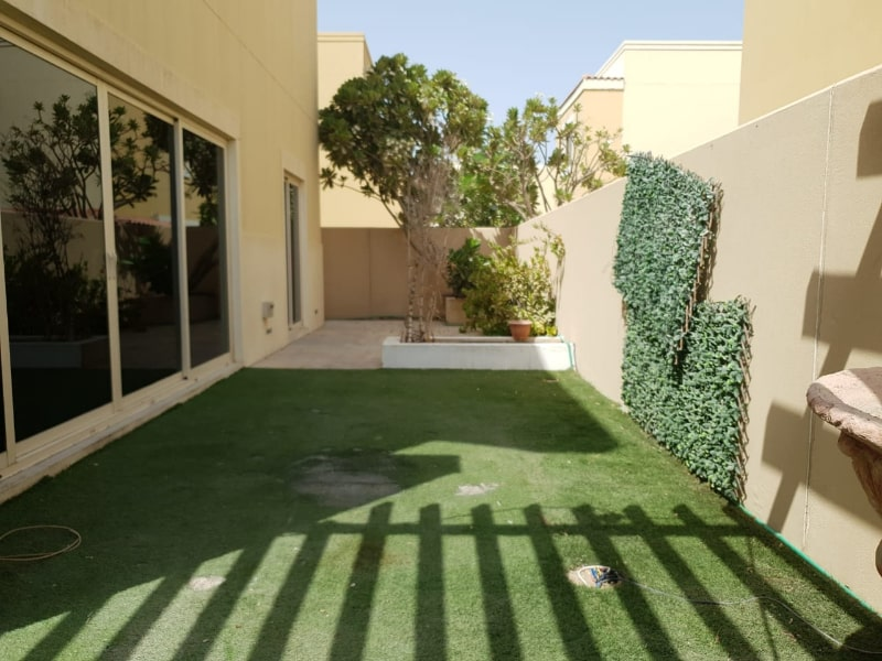 outside wall plants